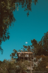 Leica D-Lux Typ-109 - esküvő fotózás - Los Angeles - 63