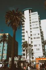 Sony A7 II Los Angeles - 029